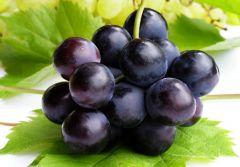 Виноград помогает соблюдать диету