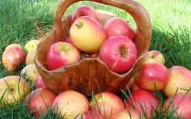 Яблочная диета: с пользой для фигуры
