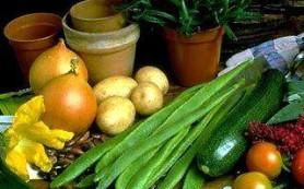 Переход на вегетарианство: плюсы и минусы