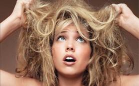 Сухие волосы: как их оживить и напитать