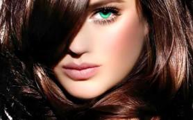 Домашние маски для поврежденных волос: примеры составов масок