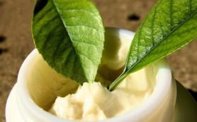 Рецепты домашних кремов для лица: полезные советы