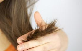 Ухаживаем за секущимися кончиками волос