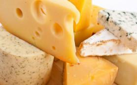 Потребление сыра поможет снизить вес