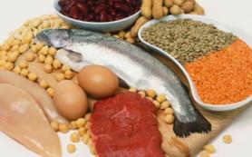 Белковая пища поможет избавиться от лишних килограммов