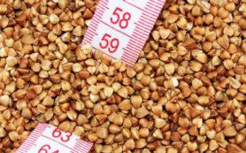 Достоинства и недостатки гречневой диеты