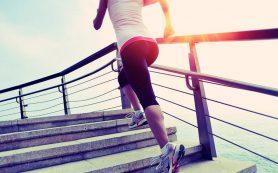Ходьба по ступенькам сжигает больше калорий, чем бег