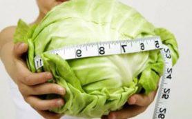 Капуста поможет похудеть