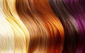 Правильно окрашиваем волосы