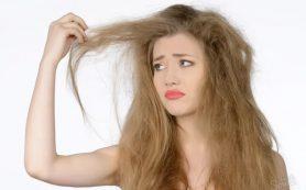 Рекомендации по уходу за сухими волосами