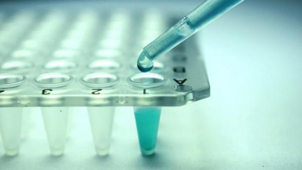 Лечение стволовыми клетками устраняет симптомы ранней менопаузы