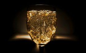 Ученые нашли связь между шампанским и похудением