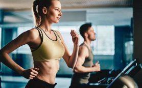 Дорогие спортзалы не тренируют лучше дешевых