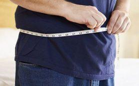 Для успешного похудения можно есть всё, но в небольших количествах
