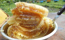 5 причин включить мёд в повседневную диету