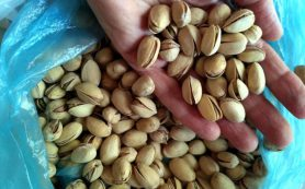 Лучшие низкокалорийные закуски для желающих похудеть
