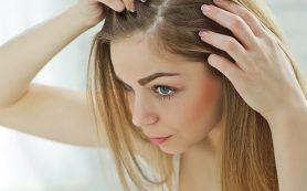 Мужские лекарства остановят выпадение волос у женщин