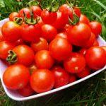 Личный опыт: почему стоит отказаться от помидоров навсегда