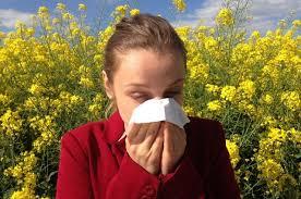 Как определить, что у вас сезонная аллергия