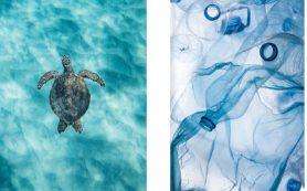 Экологично: бренды Fa и Schauma представили бьюти-новинки из переработанного пластика