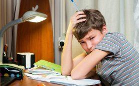 Что делать если подросток не хочет учиться